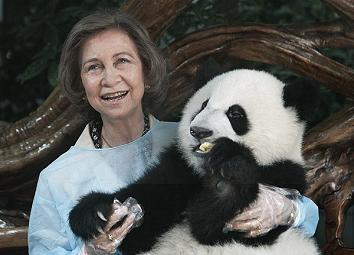 ¿Cuándo bautizan al panda?